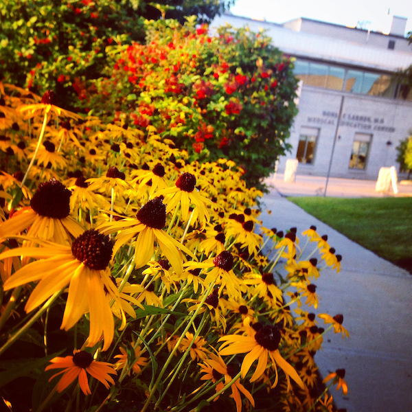 20140905FlowersMedEd (1)